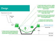 Wildlife Pond design - sectional view